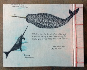 Narwhal; back cover